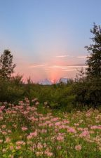 The Silver Dagger by Nymph_Girl