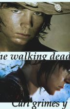 The Walking Dead [Carl Grimes y tú] by DestinyCaps