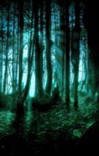 La forêt des âmes perdus by Ulquia