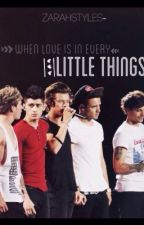 """Little Things""(1Direction Fic) by ZarahStylesx"