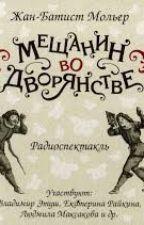 Мещанин во дворянстве by vasilisabl