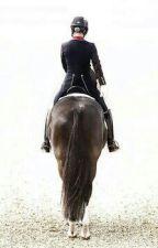 Все о лошадях и пони by PolinaHorses