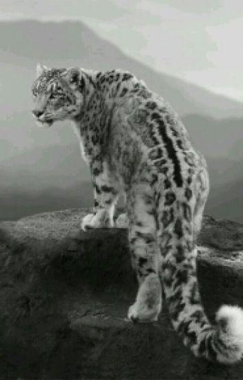 A Leopard's Beloved Alpha's (boyxboy)