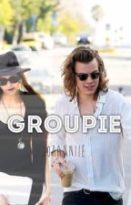 Groupie (Harry Styles) by Johanniie