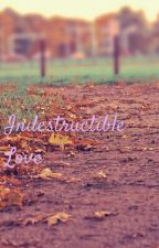 Indestructible Love (Maddie friend and Billy fanfiction) by _DarthQueen_