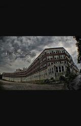 The Escape by RaeganSchulz