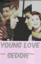 ~Young Love~SEDDIE by Rocksxie