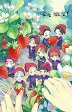 [EXO ] Diệc Phàm , Lộc Hàm , Tử Thao......tôi nhớ các cậu by Hobbi_min
