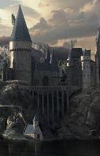 Harry Potter & la fille de Sirius Black by lisagub
