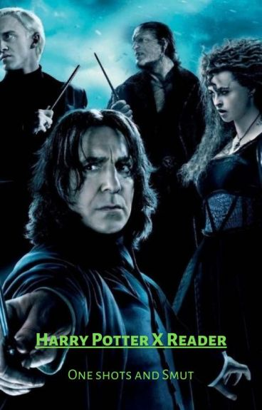 Harry Potter X Reader one shots/Two shots/Lemons :3