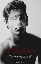 Temido by Antu06