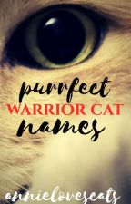 Purrfect Warrior Cat Names by annlovescats