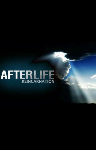 Afterlife: Reincarnation