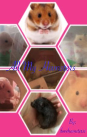 All About My Past Hamsters by TheHamsterPlanet
