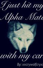 I Just Hit My Alpha Mate With My Car by xxcrywolfcryxx