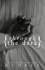 Through the Dark by allegrettos