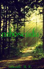 Emboscada by Amanda3234