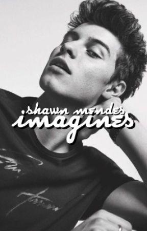 Shawn Mendes Imagines by staleamanda