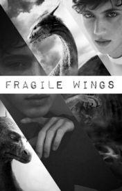 Fragile Wings (boyxboy) by Insomniatic_love