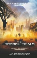 The Scorch Trials [DISCONTINUED] by mc-lean