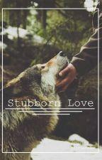 Stubborn Love [Teen Wolf-Derek Hale] - tłumaczenie by 01Hazel