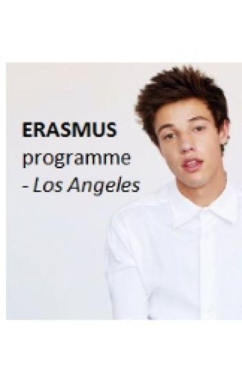 Erasmus Program [Old Magcon] || Tome 1 || TERMINÉE