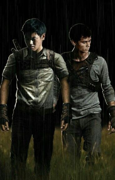 Maze Runner Imagines (Book 1)