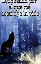 Rechazada por el que me destruyo la vida by GuadalupezlDeMendes