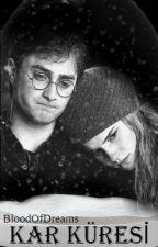 Kar Küresi (Harry/Hermione AU) by BloodOfDreams