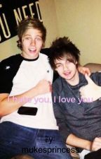 I Hate You, I Love You by mukesprincess