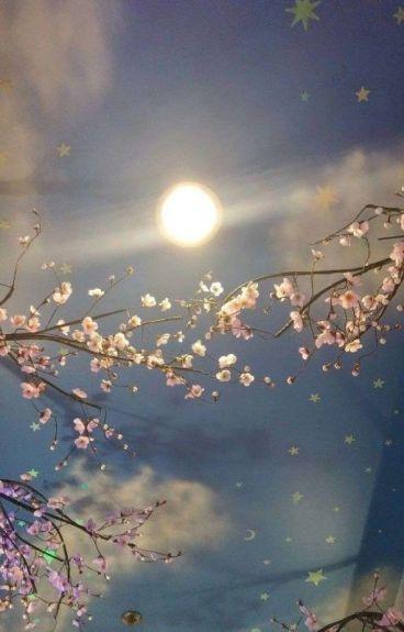 cool kids dont love //destiel