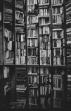 Frases: peliculas, series, novelas, canciones. by mayelagonzalez7