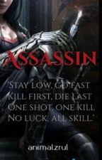 Assassin by animalzrul