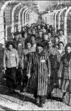 El Lado Oculto de Auschwitz by YamiSarayori