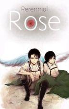 Perennial Rose | {Levi x OC} | Shingeki no Kyojin | by Kamisama961