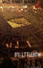 Maze Runner Imagines by lttlebow