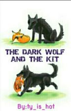 The dark wolf and the kit (Sterek AU)(boyxboy) by ty_is_hot