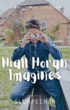 Niall Horan Imagines by slurpeenjh