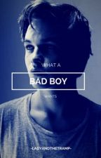 What A Bad Boy Wants by -LadyandtheTramp-