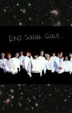 EXO Salah Gaul by Real_Meliya