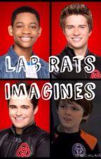 Lab rats imagines(Hiatus) by Shipper4Lyfe1254