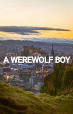 A Werewolf Boy by Usuikazehaya