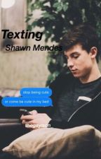 Texting Shawn Mendes by mendesno