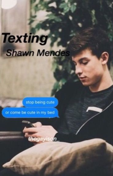 Texting Shawn Mendes