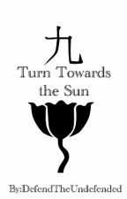 Turn Towards the Sun by DefendTheUndefended