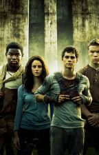 The Maze Runner Preferences. by thatwriter1234