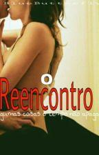 O Reencontro - 3°Livro by Grarmyutt