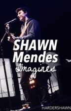 Shawn Mendes Imagines by hardershawn