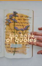 Big Book of Quotes!! by zuperzayn
