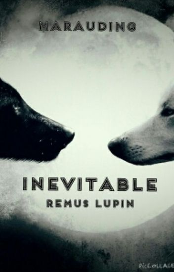 Inevitable, A Remus Lupin Love Story CURRENTLY BEING REWRITTEN